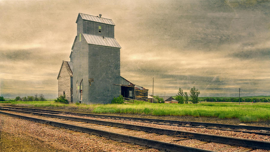Cottonwood South Dakota Grain Elevator II by Joan Carroll