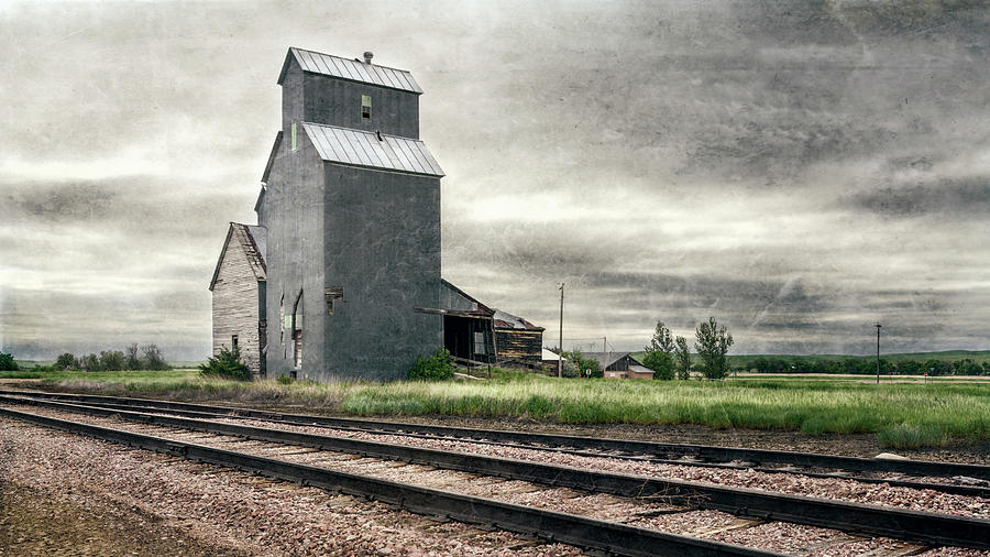 Cottonwood South Dakota Grain Elevator III by Joan Carroll