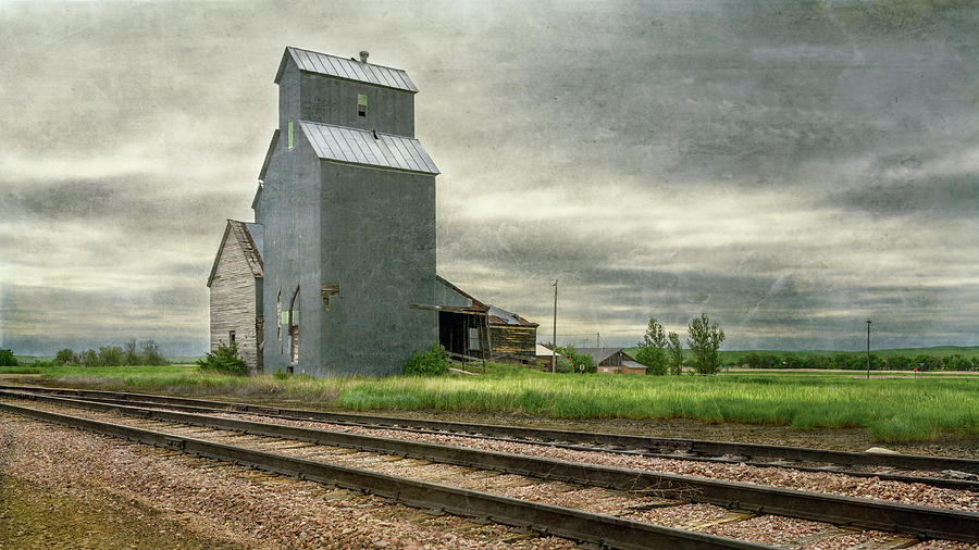 Cottonwood South Dakota Grain Elevator by Joan Carroll