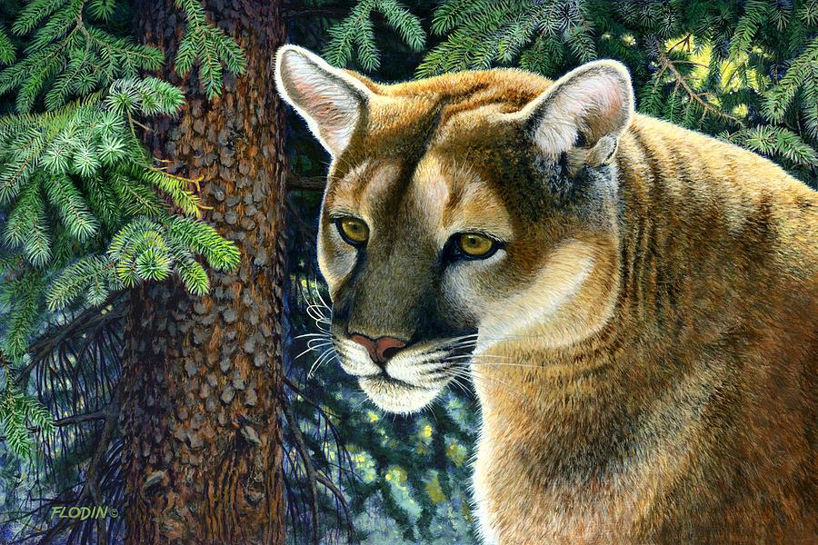 puma cat noise