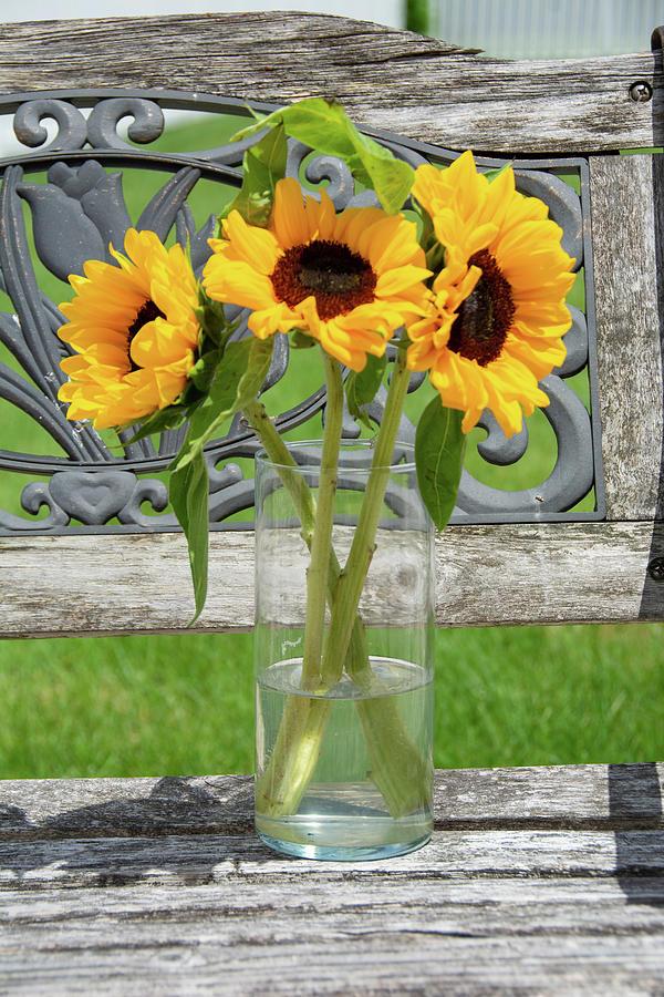 Country Bouquet by Jennifer Wick