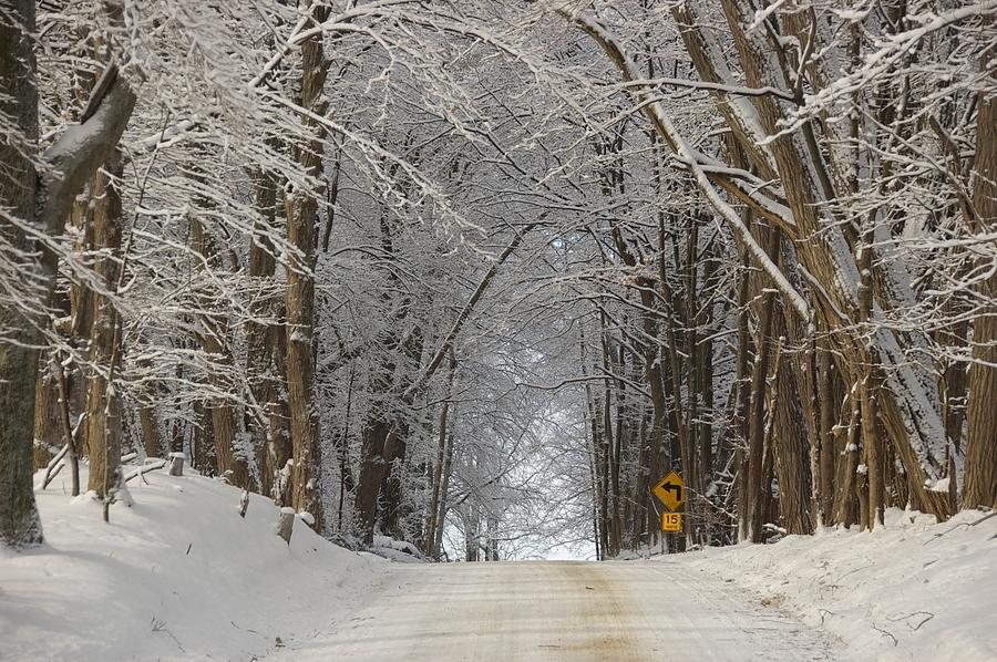 Country Road Photograph - Road Chill by Marty Klar