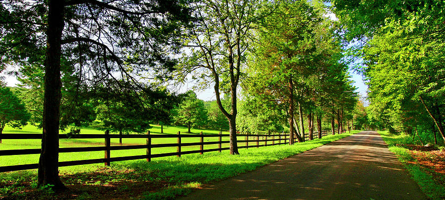Country Road Southern Virginia Blue Ridge Appalachian Mountains by The American Shutterbug Society