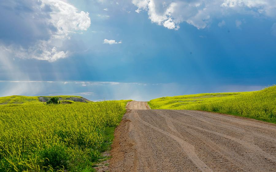 Country Road by Susan Rydberg