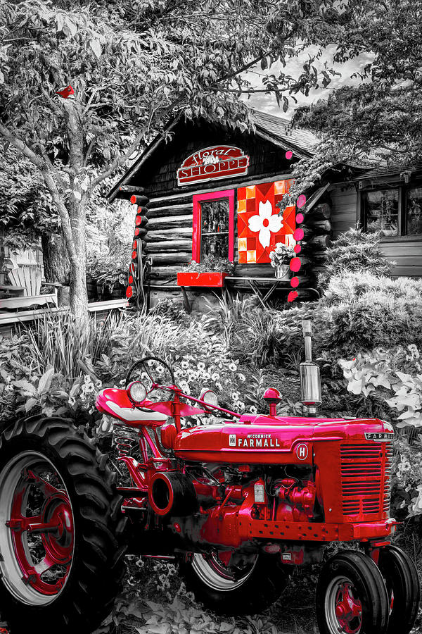 Barns Photograph - Country Town Charm In Red, Black And White by Debra and Dave Vanderlaan