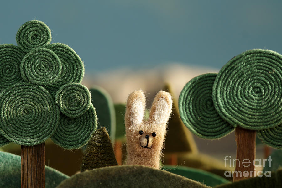 Country Photograph - Countryside With Hare - Stylized Nature by Kreus