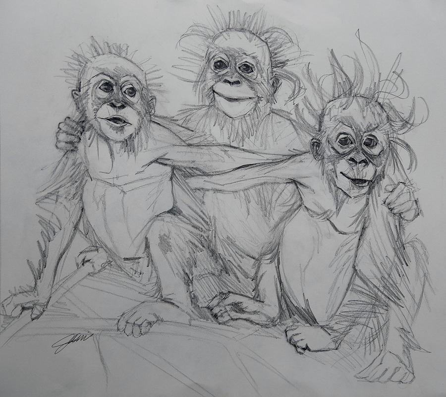 Cousins Sketch by Jani Freimann