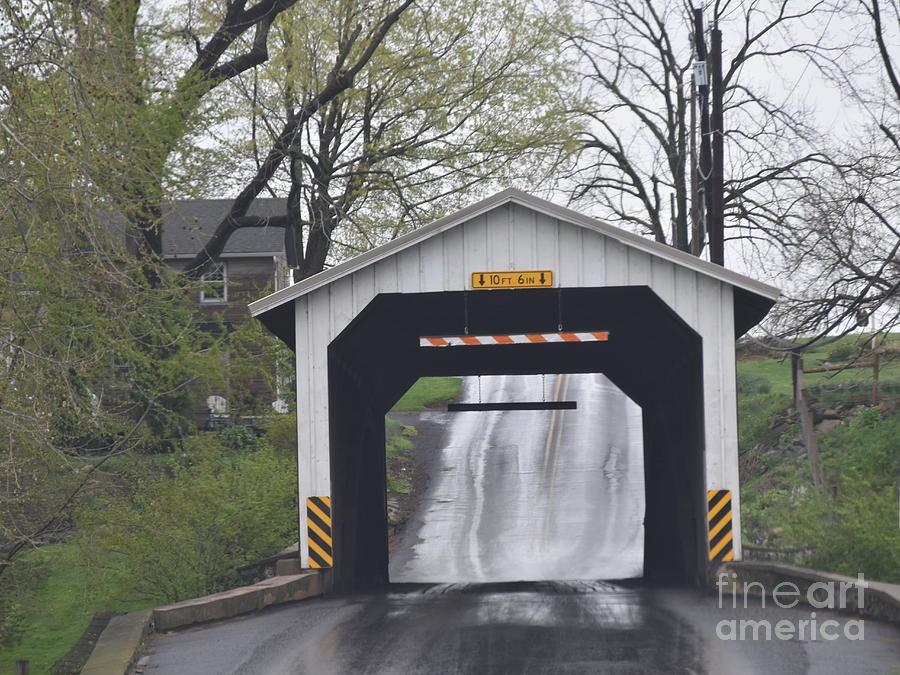 Covered Bridge in April by Christine Clark
