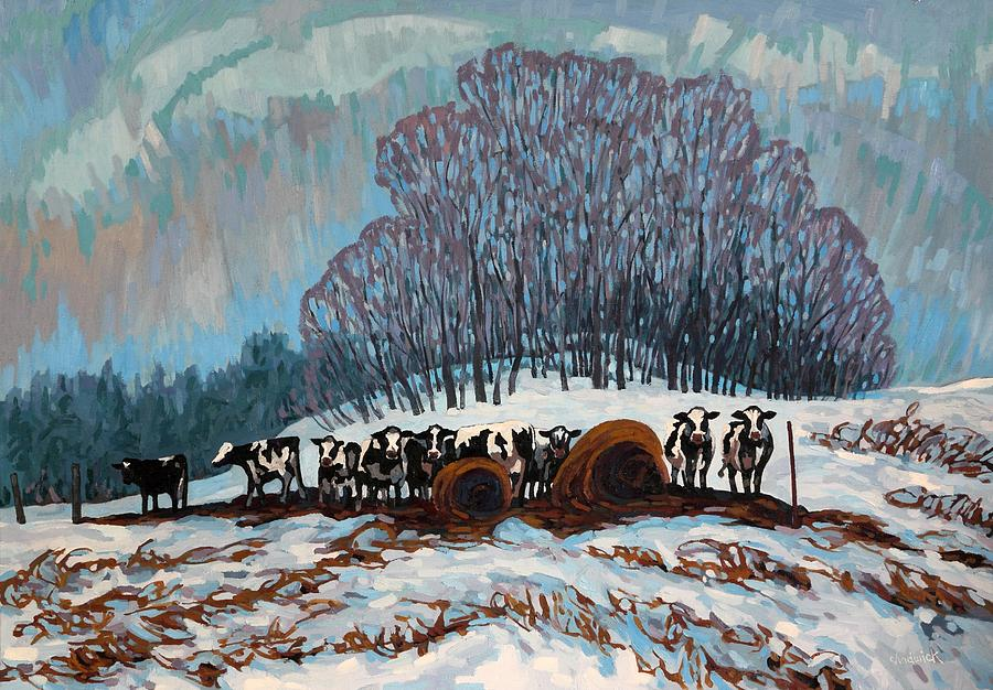 Covey of Cattle by Phil Chadwick