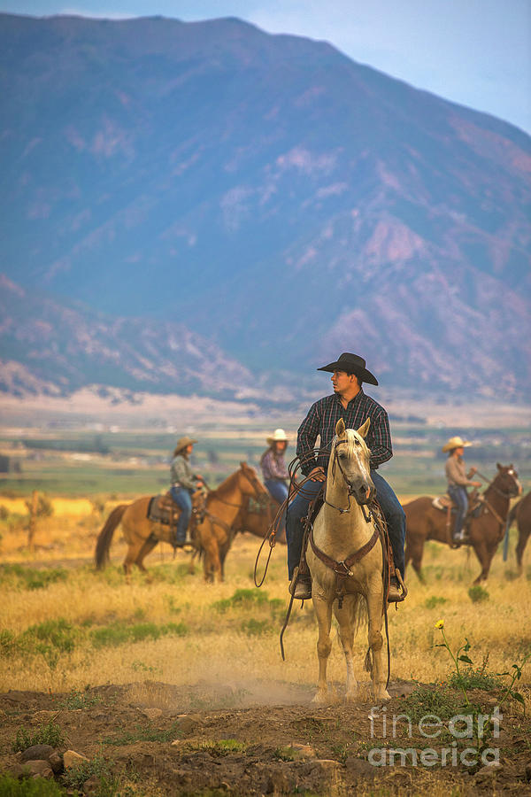 Cowboy In The Western Usa Photograph