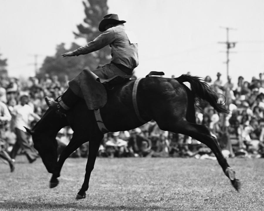 Cowboy Riding Bucking Horse Photograph by Stockbyte