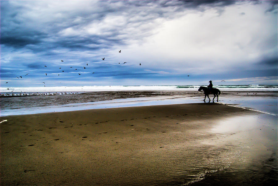Cowboy Riding Horse On Beach Photograph by D. R. Busch