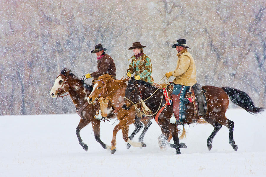 Cowboys And Cowgirl Riding Snowfall Photograph by Danita Delimont