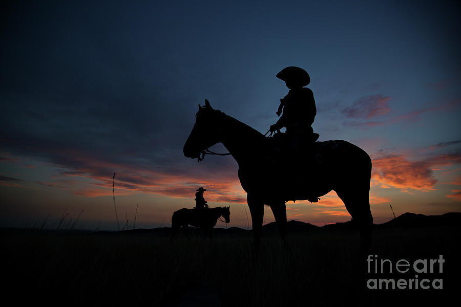 Cowgirl Silhouette  by Terri Cage