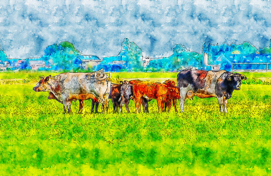 Cows Pasture  watercolor drawing by Hasan Ahmed