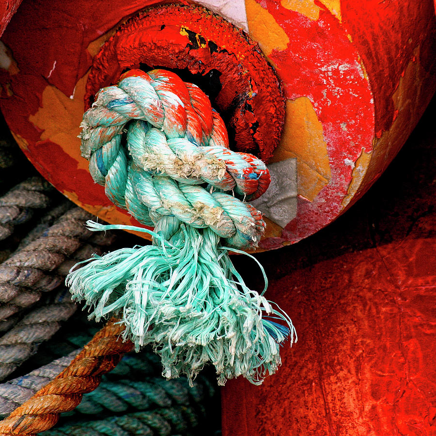 Buoy Photograph - Crab Pot Buoy Detail by Carol Leigh