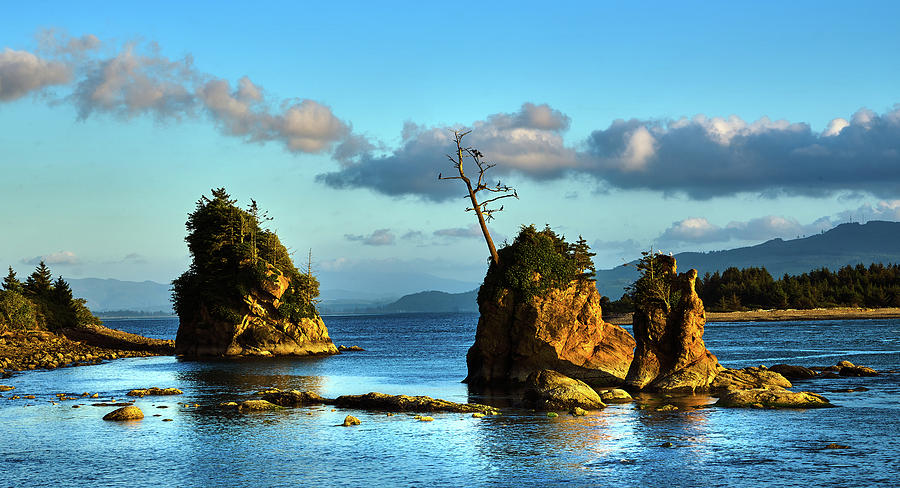 Crab Rock, Bar View Oregon, Oregon coast by TL Mair