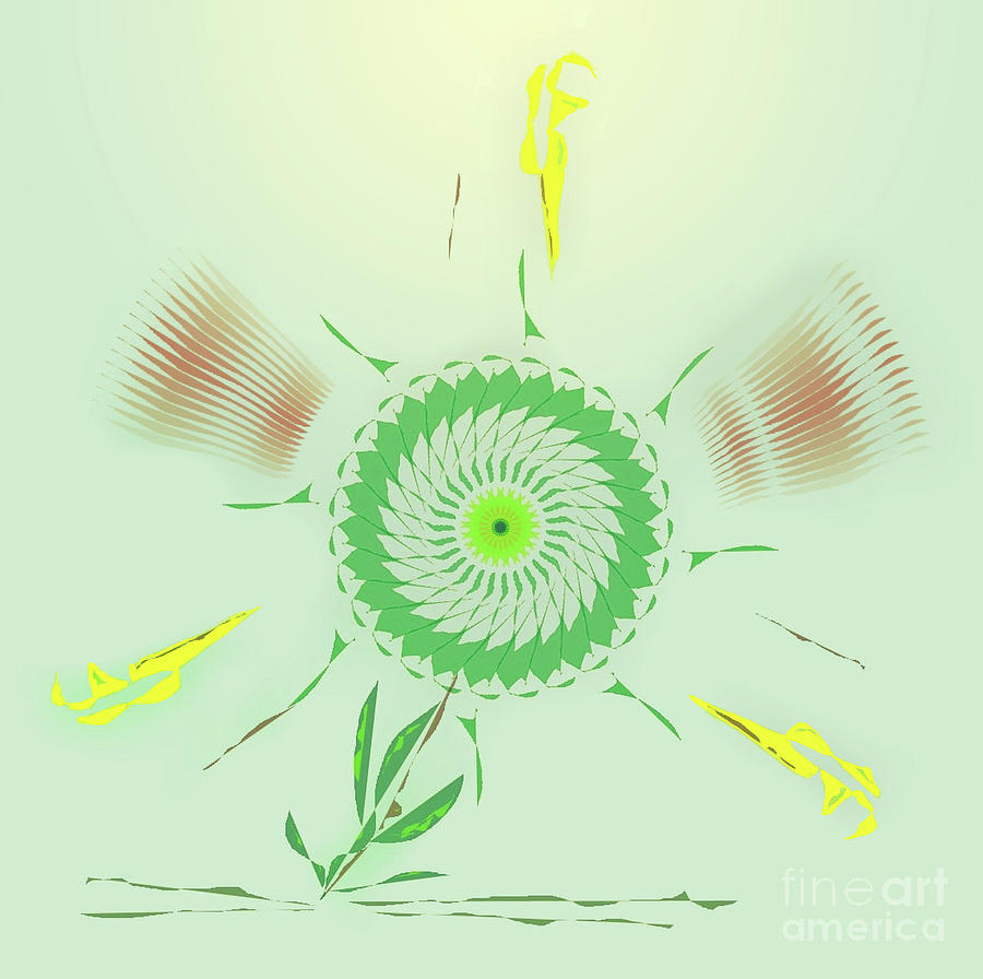 Crazy Spinning Flower by James Fannin