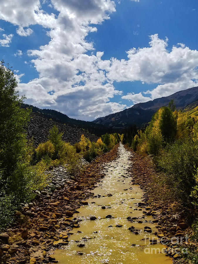 Creek in Colorado by Elizabeth M