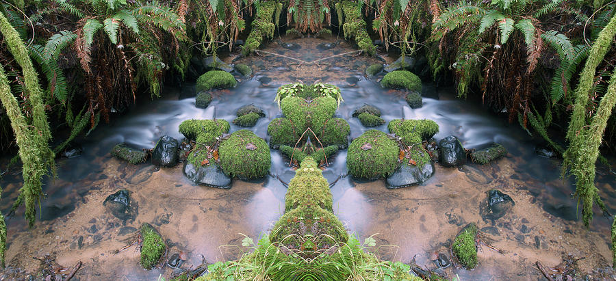 Creek Spirits #5 by Ben Upham III