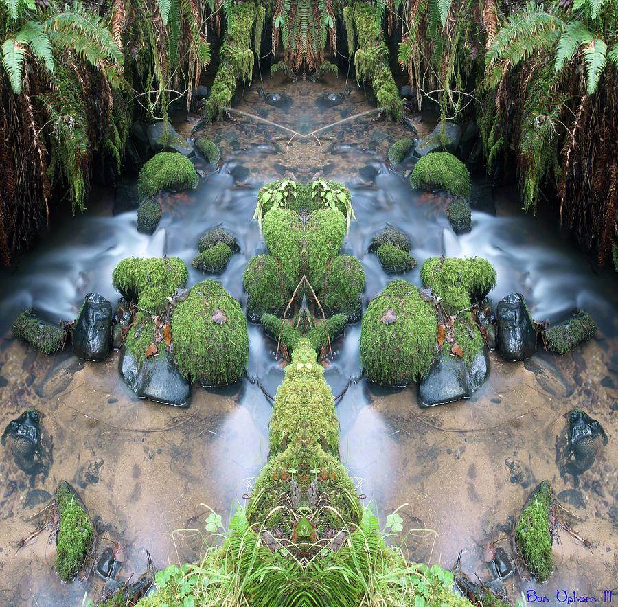 Creek Spirits #5 Crop 2 by Ben Upham III