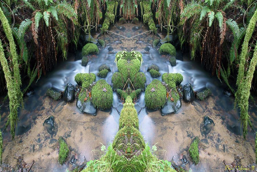Creek Spirits #5 Crop 3 by Ben Upham III