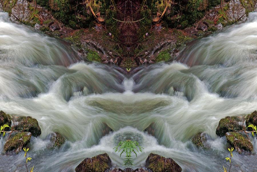 Creeklife #2 by Ben Upham III