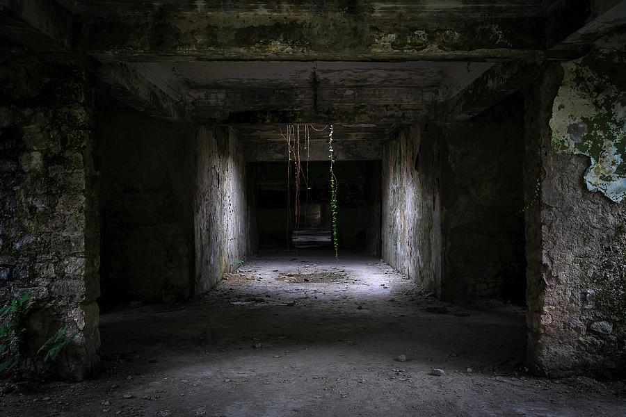 Creepy Dark Hallway by Roman Robroek