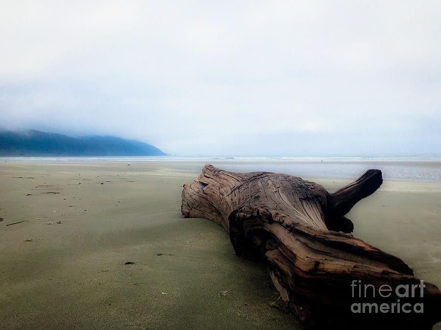 Crescent City Beach Photograph