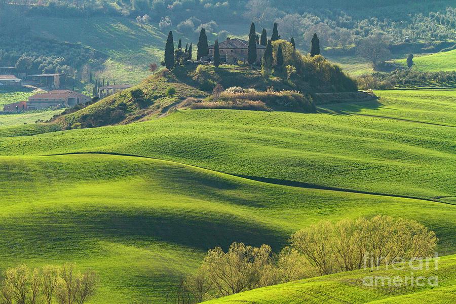 Crete Senesi Rolling Farmland-3 by Heiko Koehrer-Wagner