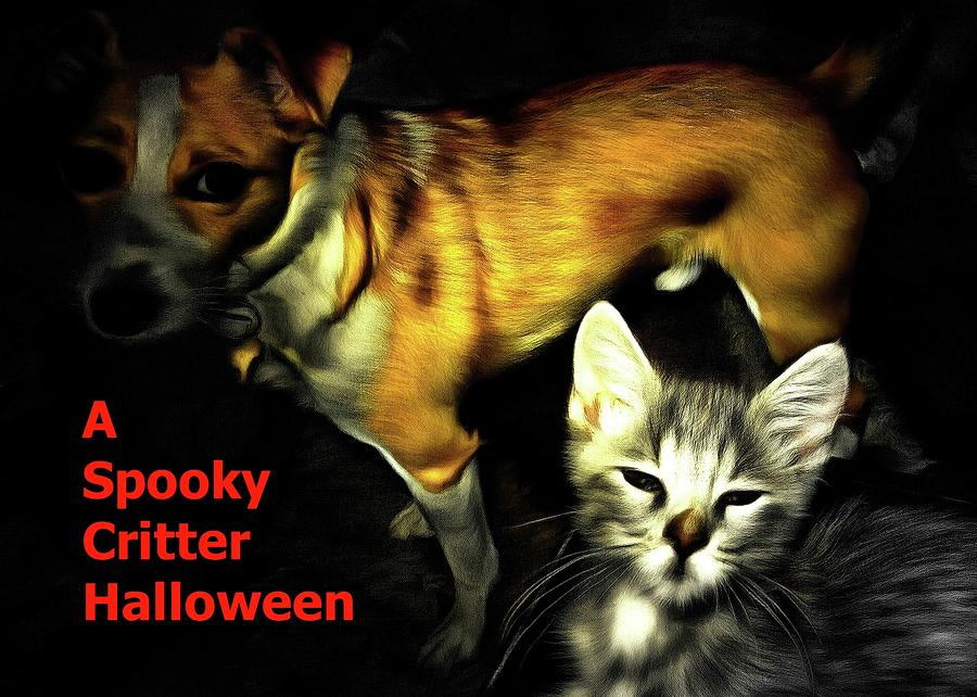Halloween Photograph - Critter Halloween by Dorothy Berry-Lound