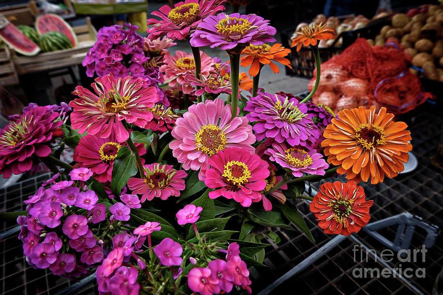 Croatian Market Flowers Photograph