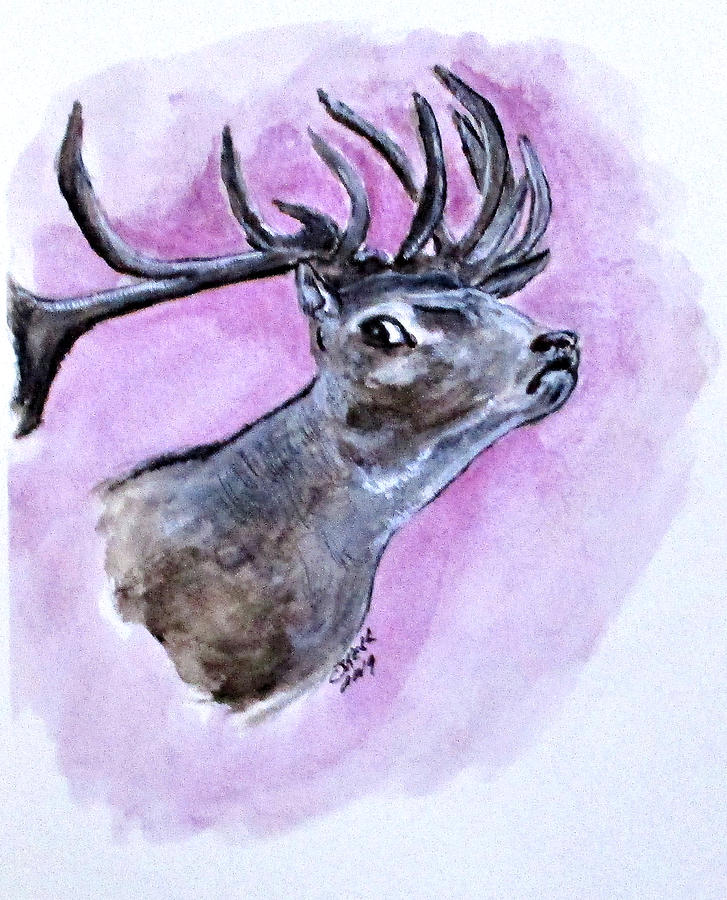 Croatian Stag by Clyde J Kell