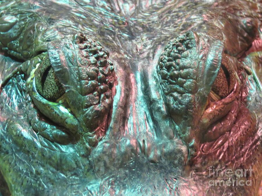 Crocodile by Mary Mikawoz
