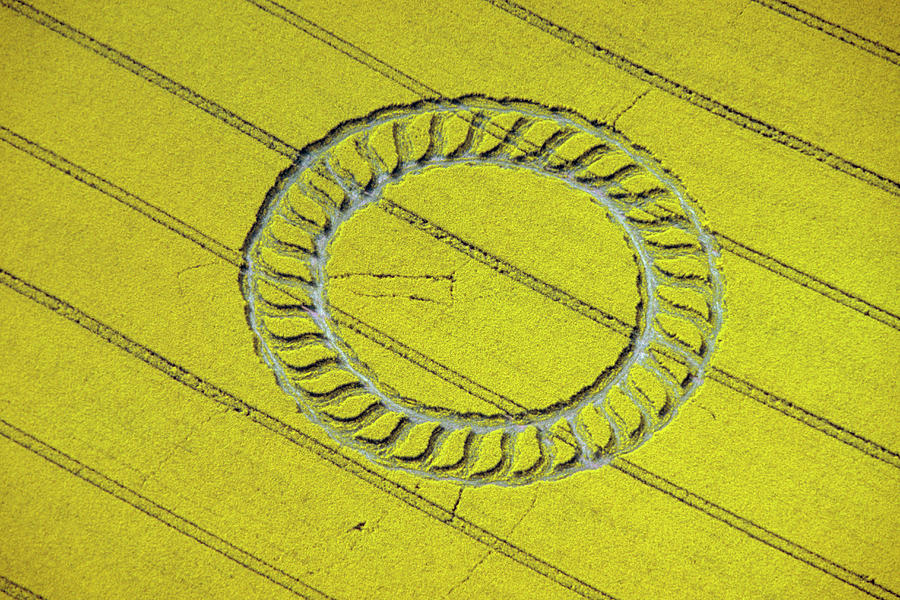 Crop Circle Near West Kennet Photograph by Heritage Images