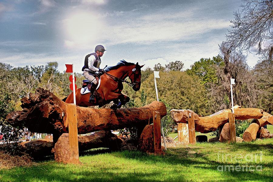 Cross Country Equines by Paul Wilford