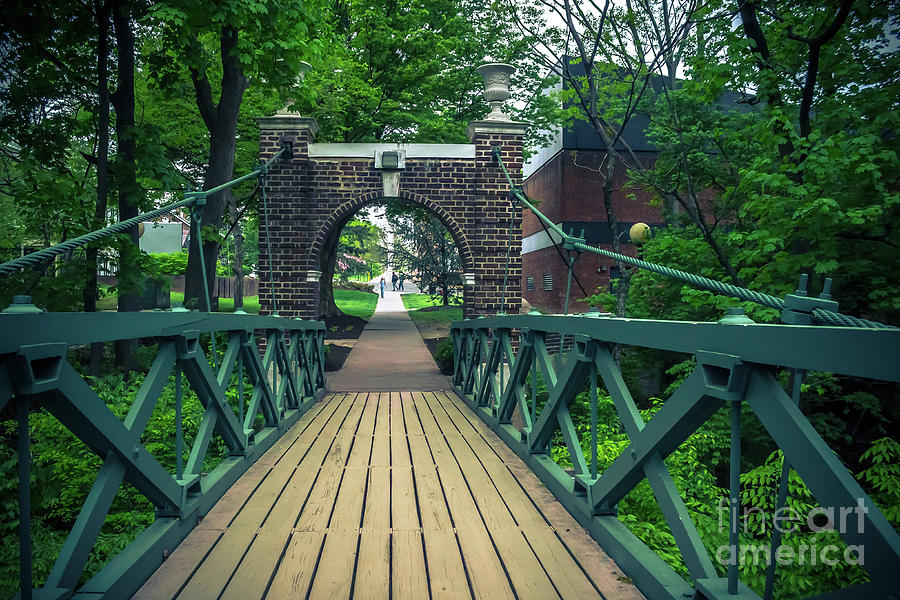 Crossing the Kissing Bridge by Colleen Kammerer
