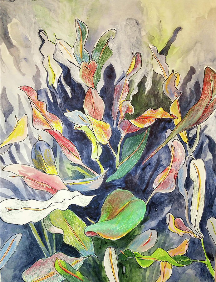 Croton plant by Tilly Strauss