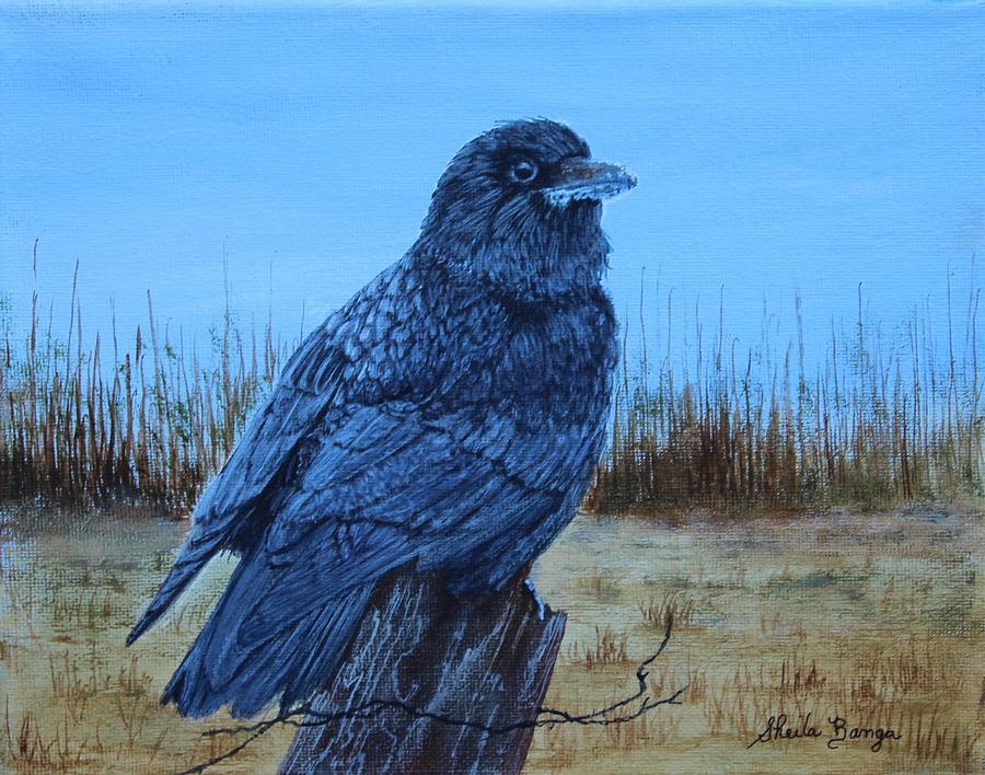 Crow -1 by Sheila Banga