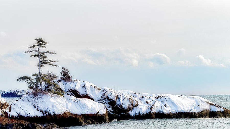 Crow Island, Winter Light by Michael Hubley