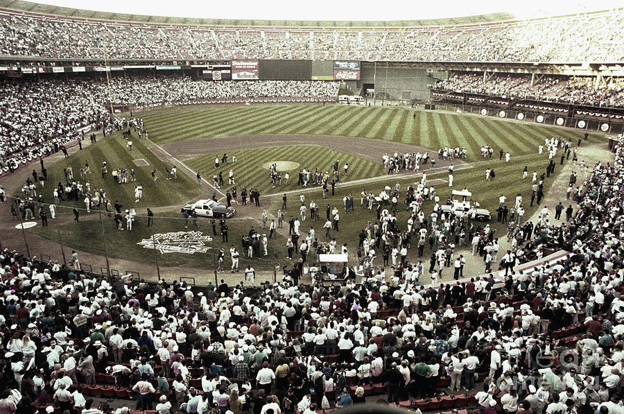 Crowd At Candlestick Park Photograph by Bettmann