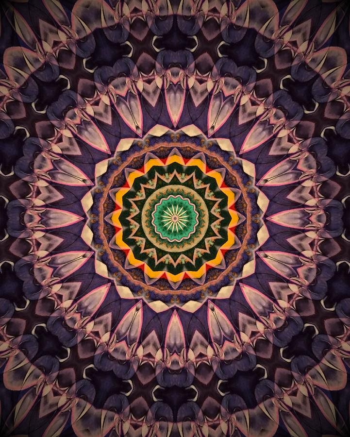 Crown Chakra Mandala Digital Art by Michell Rosenthal
