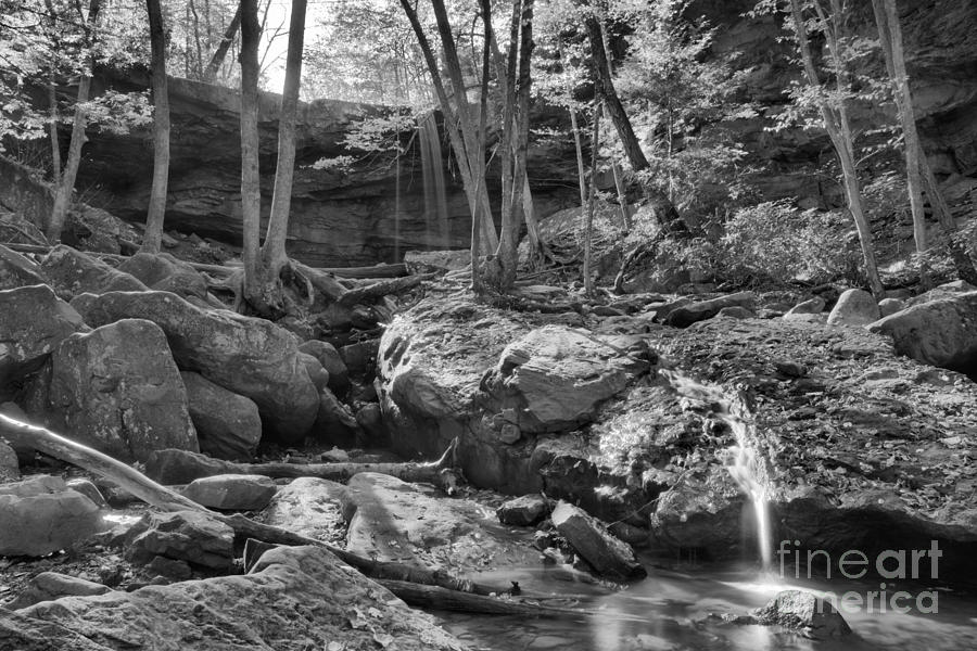 Cucumber Falls Autumn View Black And White by Adam Jewell
