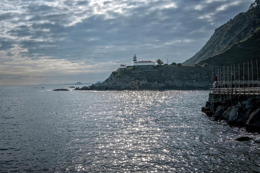 Cudillero Harbor by Tom Singleton