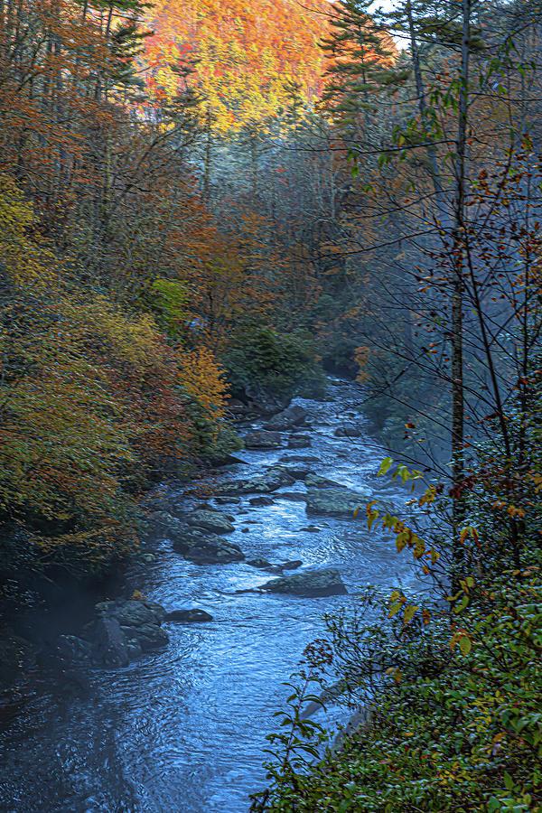 Cullasaja River at dawn by Kelly Kennon