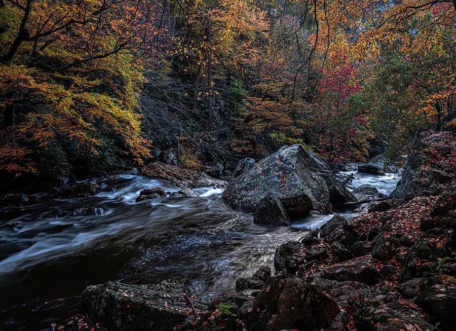 Cullasaja River Rock by Kelly Kennon