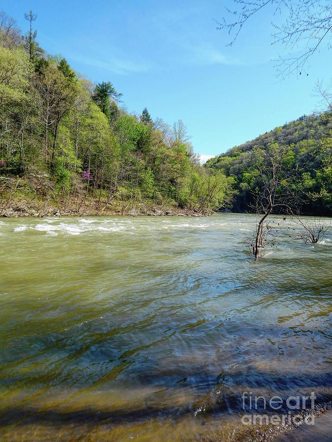 Cumberland River by Phil Perkins