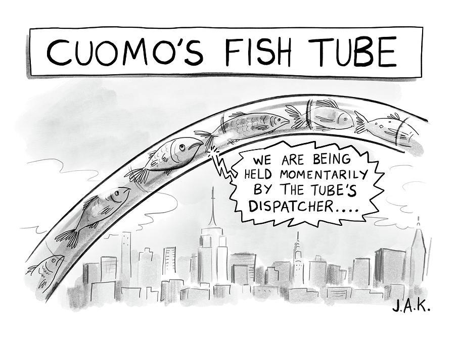 Cuomos Fish Tube Drawing by Jason Adam Katzenstein