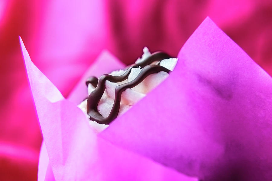 Cupcake With Chocolate Drizzle and Pink Wrapper by Jeanette Fellows