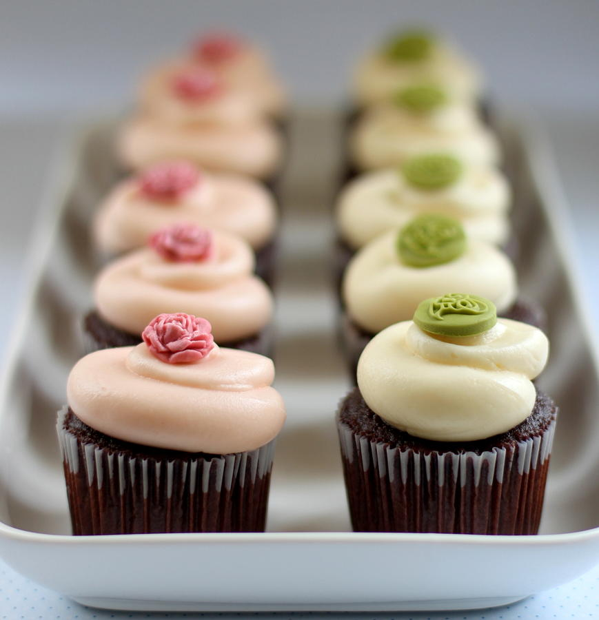 Cupcakes In Line In Tray Photograph by Simple & Elegant